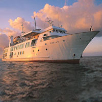 Cruise Services