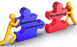 Marketing & Business Development Services